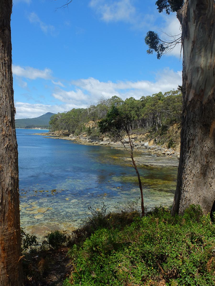 Bruni Island